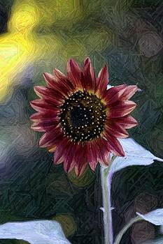 Purple Sunflower by Richard McRee