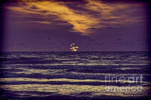 Purple Sunrise by Jeff Breiman