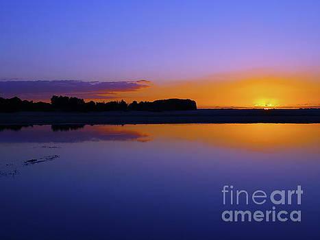 Purple Sunrise by Trena Mara