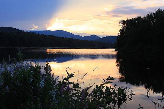 Purple Sunset  by Susan Schmidt