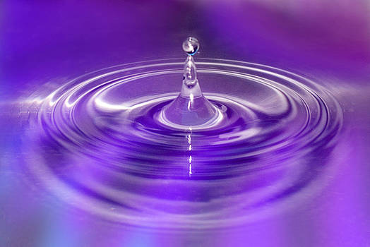 Purple Water Drop by Pixie Copley