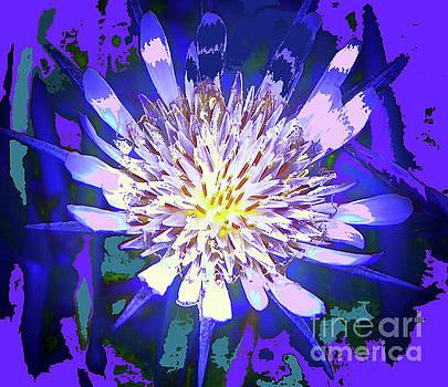 Purple White Flower by Shirley Moravec