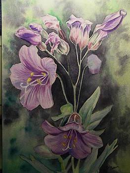 Purple Wildflowers by Dale Jackson