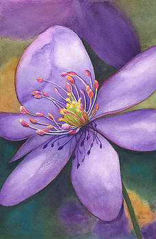 Purple's Passion by Wendy Cunico