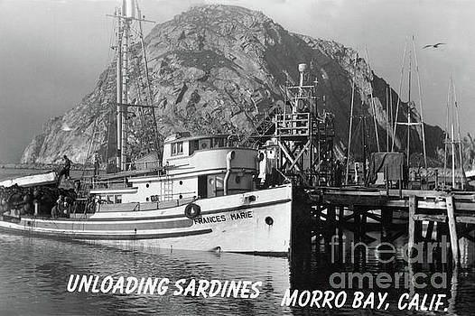 California Views Mr Pat Hathaway Archives - Purse seiner Frances Marie unloading Sardines at Morro Bay, Calif. 1950