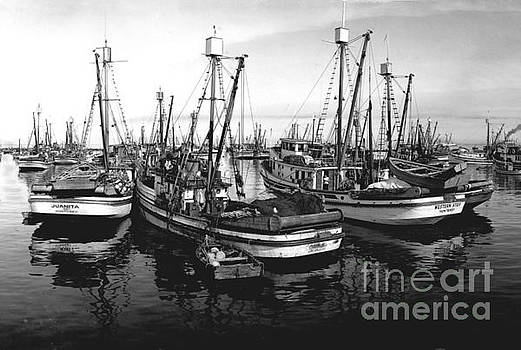 California Views Mr Pat Hathaway Archives - Purse Seiner Juanita and Western Star Circa 1949