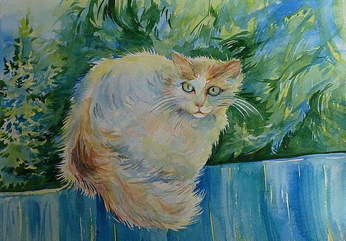Anna  Duyunova - Puss