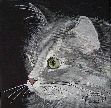 Puss Puss by Sharon Steinhaus