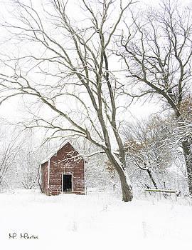 Melinda Martin - A Snowy Wonder