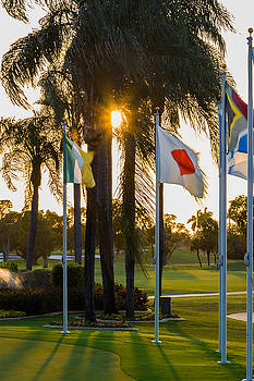 Putting Green Flags  by Ed Gleichman