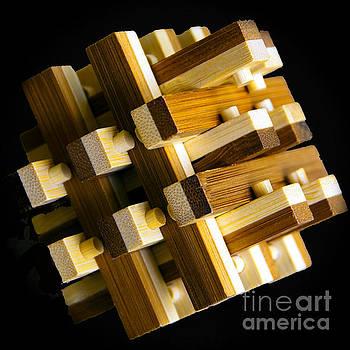 Nancy Stein - Puzzled
