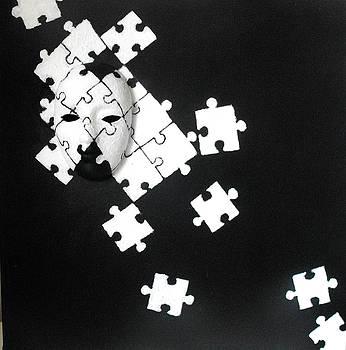 Puzzled by Stanga Mara