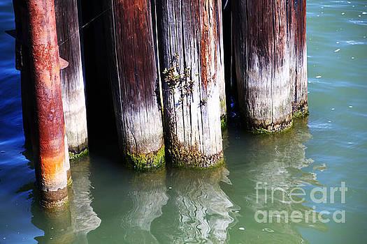 Pylons poles water by David Frederick
