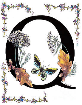 Stanza Widen - Q is for Queen Annes Lace and Butterfly