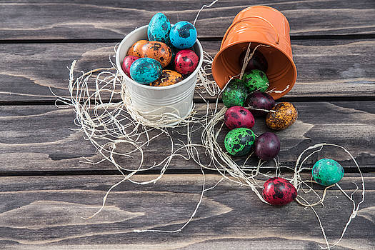 Quail Easter eggs composition on wooden background by Julian Popov