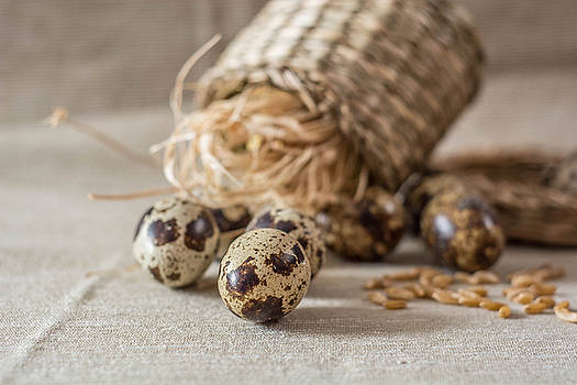 Quail eggs and wheat  on grey background by Julian Popov