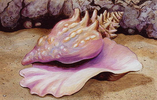 Queen Conch by Edoen Kang