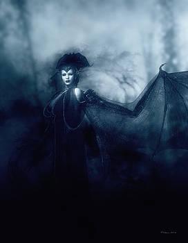 Queen of Shadows by Melissa Krauss