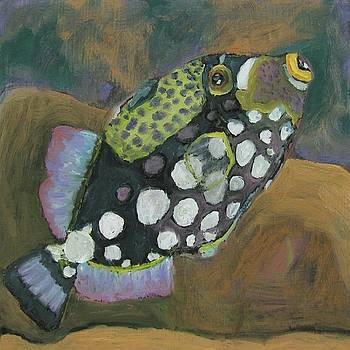 Queen Trigger Fish by Susan  Spohn