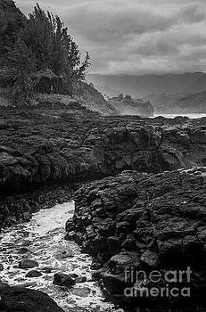 Queens Bath Kauai by Lucian Capellaro