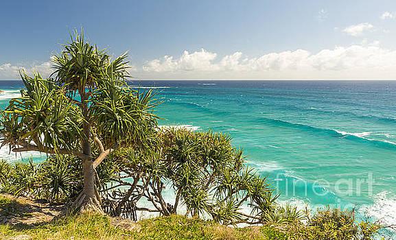 Tim Hester - Queensland Coastline