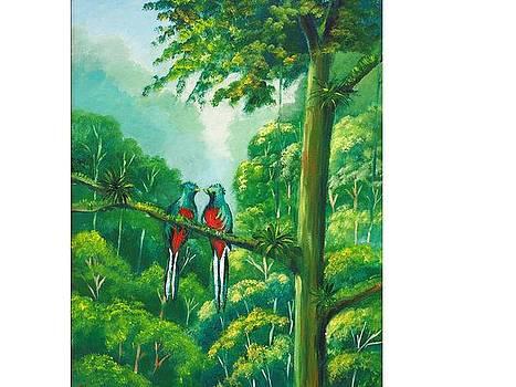 Quetzales by Jean Pierre Bergoeing