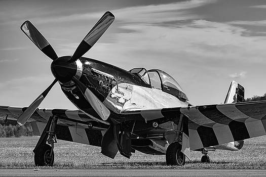 Quick Silver in Black and White by Chris Buff