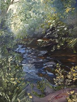 Quiet Creek by Merrie Kapron Taverna