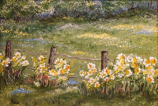 Quiet Field by Leea Baltes