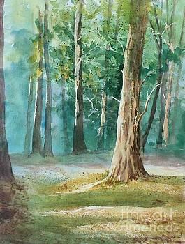 Quiet Forest by Yohana Knobloch