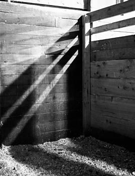 Quiet in the Stall by Samantha Boehnke