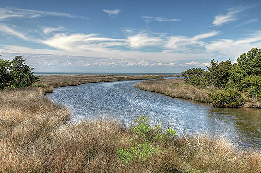 Quiet Island Inlet by Dave Ross