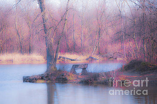 Quiet Reflections by Debbie Nobile