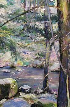 Quiet River by Linda Dessaint