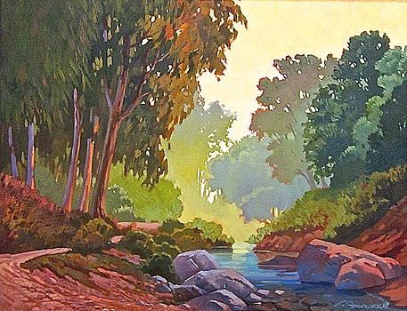 Quiet Stream by Lynne Fearman