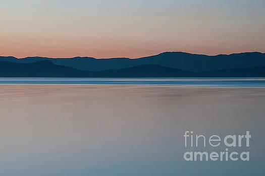 Quiet Tide by David Emond