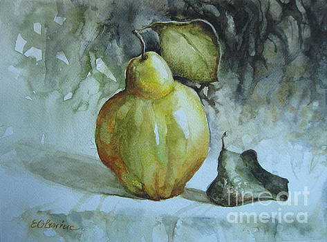Quince... by Elena Oleniuc