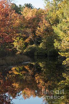 Bob Phillips - Quinebaug River Reflection