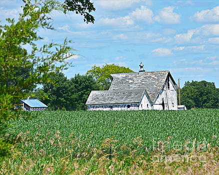Quite Country Living by Kathy M Krause