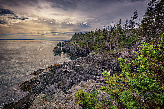 Quoddy Head State Park by Rick Berk