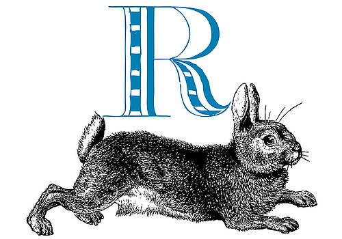 R Rabbit by Thomas Paul