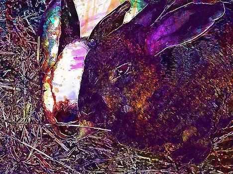 Rabbit Animals Nature Hay  by PixBreak Art