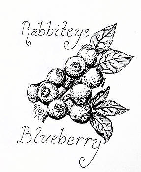 Rabbiteye Blueberry by Nicole Angell