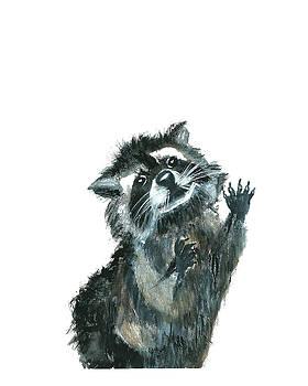 Raccoon  by Garima Srivastava