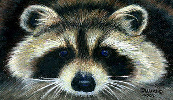 Raccoon by Jason Dunn