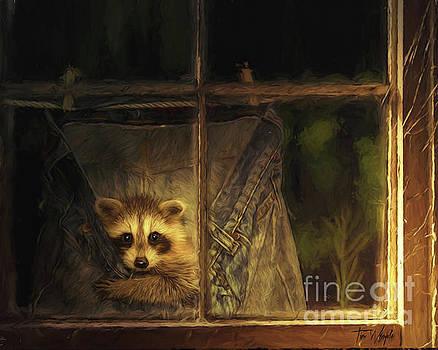 Raccoon Pants by Tim Wemple