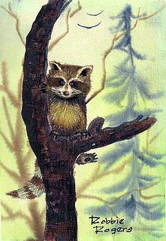 Raccoon by Robbie L Rogers