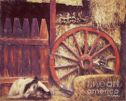 Raccoon Wagon Wheel by Tim Wemple