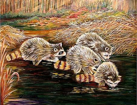 Raccoons at Sunrise by Carol Allen Anfinsen