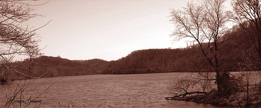 Radnor Lake  by Lorraine Louwerse